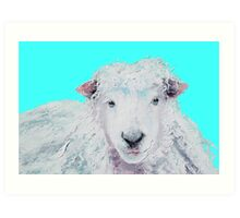 A Woolly sheep on turquoise background Art Print