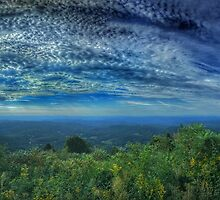 Morning on the Blue Ridge by Anthony M. Davis
