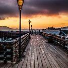 S.F. Pier 41 by FelipeLodi