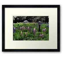 Birdhouse in the Lupine Framed Print