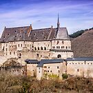 Vianden Castle by FelipeLodi