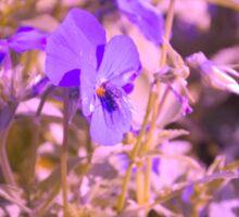 Lila Blumen mit Fliege Sticker