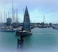 *Coming in to dock at Williamstown Vic. Australia by EdsMum