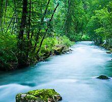 Rushing River by metriognome