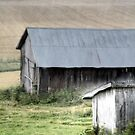 21.8.2014: Abandoned Farm Buildings by Petri Volanen