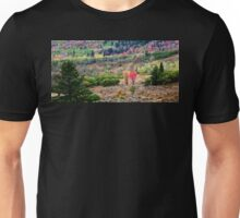 Rainbow Valley Unisex T-Shirt