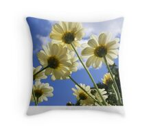 Worms Eye View of 10 Daisies Throw Pillow