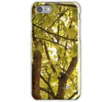 Leaves and Branches iPhone Case/Skin