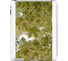 The Leaves are Fading iPad Case/Skin