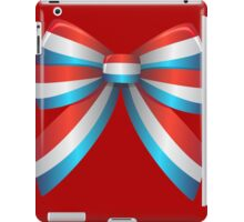 Red White and Blue Ribbon iPad Case/Skin