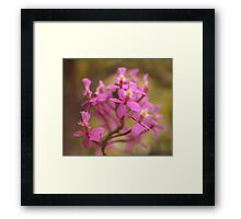 Crucifix Orchid Bunch Framed Print