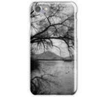 San Jacinto Wildlife Area  iPhone Case/Skin