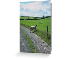 Elegant Sheep Greeting Card