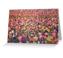 Meshed Up Colourful Summer Tulip Field Greeting Card