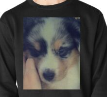 PUP Pullover