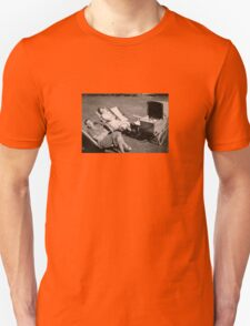 The relaxed attitude to parenting in the 1930s. T-Shirt