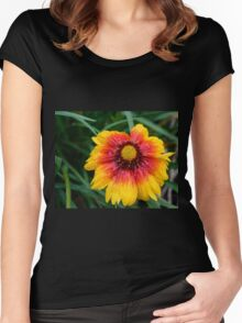 Gazania Women's Fitted Scoop T-Shirt