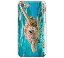 Turtle Smile iPhone Case/Skin