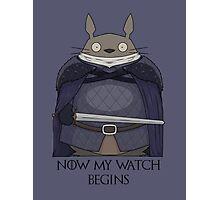 Totoro Night's Watch Photographic Print