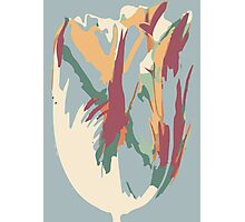 Abstract Artistic Colourful Summer Tulip Photographic Print