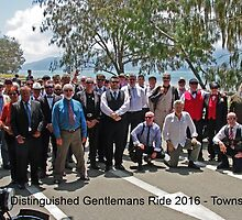 Distinguished Gentlemans Rider Participants - Townsville Australia by Paul Gilbert