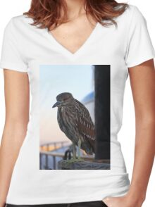 Juvenile Black-Crowned Night Heron Women's Fitted V-Neck T-Shirt
