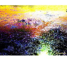 Abstract Effect - Digitally Enhanced Photograph Photographic Print