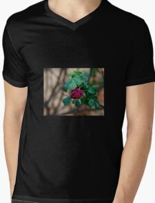 Yet another Rose Mens V-Neck T-Shirt