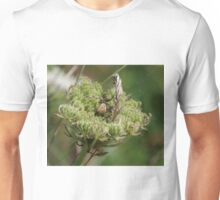 Garden Spider at Gwithian Nature Reserve in Cornwall. Unisex T-Shirt