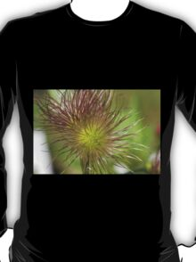 flower in spring T-Shirt