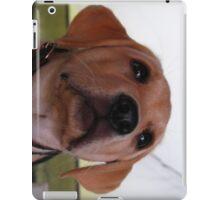 Sandy iPad Case/Skin