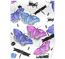 Beetles, bugs and butterflies Poster