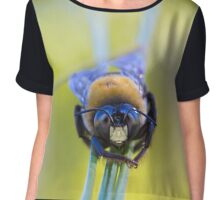 Advice from a bee Chiffon Top