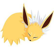 Sleeping Pokemon Photographic Print