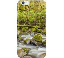 True Wilderness... iPhone Case/Skin