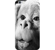 Falkor The Luck Dragon From The Neverending Story Design iPhone Case/Skin