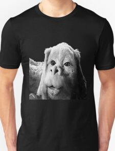 Falkor The Luck Dragon From The Neverending Story Design T-Shirt