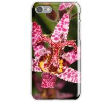 Toad Lily iPhone Case/Skin