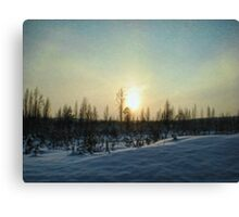 On a Winter Afternoon Canvas Print