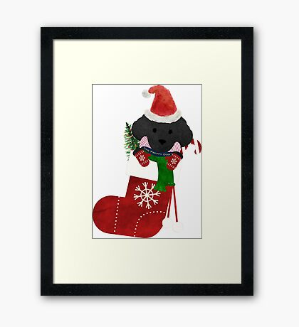 Cute Black Lab Puppy Christmas Stocking Framed Print