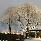 heavenly snow by LisaBeth
