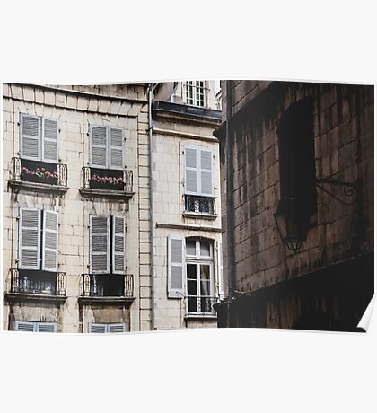 French architecture Poster