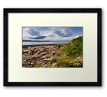 Island of Hoy. Spring Flowers from Ness Point, West Orkney. Scotland. Framed Print