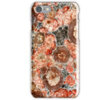 Jasper iPhone Case/Skin