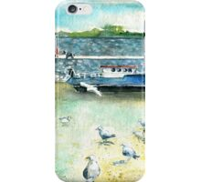 Seagulls In Ireland iPhone Case/Skin