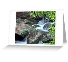 Hidden Falls Greeting Card