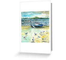 Seagulls In Ireland Greeting Card