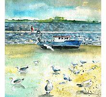 Seagulls In Ireland Photographic Print