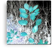 Turquoise Leaves Winter Night Canvas Print