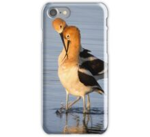 After mating dance iPhone Case/Skin